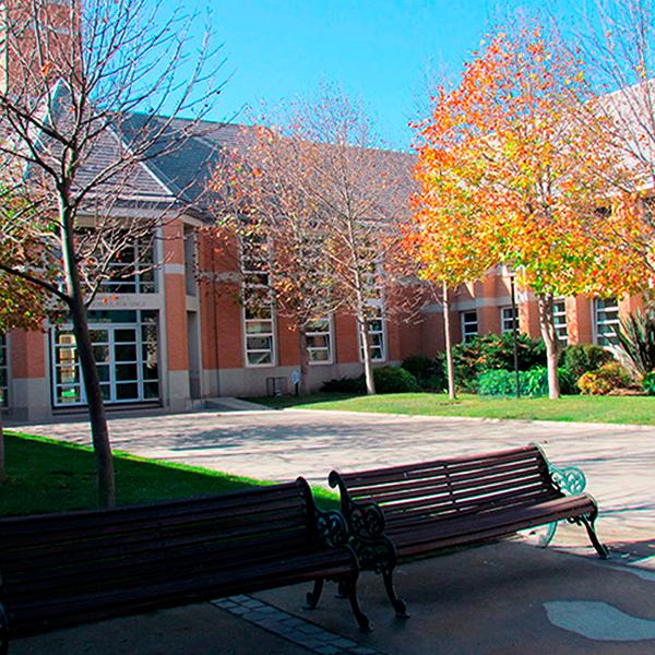 Colegio St. Margaret